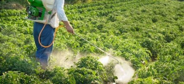 agricoltura_ciip